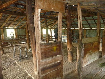 2013-11-18 08.48.50 P1050387 Simon - Quail Flat historic woolshed interior.jpeg: 4000x3000, 5554k (2013 Nov 17 19:48)