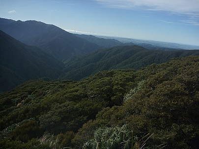 2015-07-05 11.36.14 P1020001 Simon - view from Neill Ridge down Neill Spur into Neill Creek.jpeg: 4000x3000, 5892k (2015 Nov 04 05:35)