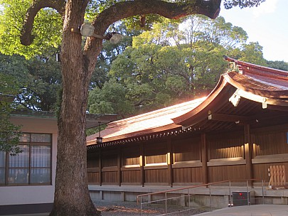 2017-01-12 14.58.59 IMG_8364 Anne - Meiji Shrine building.jpeg: 4608x3456, 6341k (2017 Jan 26 05:34)