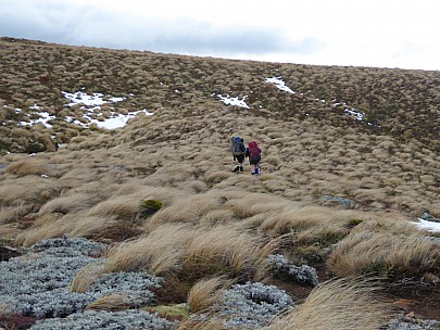 2018-07-08 12.09.26 P1010302 Brian - Simon and Alan crossing tussock ridge.jpeg: 4000x3000, 4692k (2018 Jul 10 10:07)