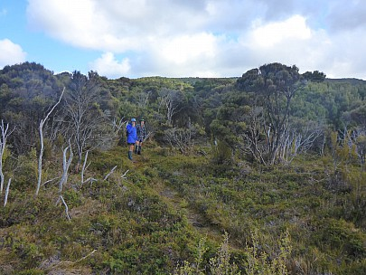 2019-11-12 09.05.34 P1020957 Simon - Jim and Brian starting up the Mt Rakeahua track.jpeg: 4608x3456, 6475k (2019 Nov 11 20:05)