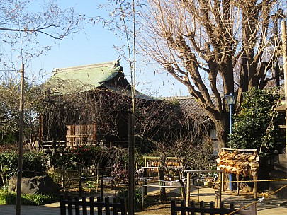 2017-01-11 13.23.53 IMG_8234 Anne - Hanazono Inari Shrine.jpeg: 4608x3456, 8426k (2017 Jan 26 05:34)