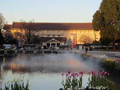 2017-01-11 16.10.13 IMG_8295 Anne - Grand Fountain and Tokyo National Museum.jpeg: 4608x3456, 6237k (2017 Jan 26 05:34)